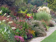 Blades of glory: Alan Titchmarsh on filling the gaps with ornamental grasses – Garden Paths Full Sun Perennials, Shade Perennials, Shade Plants, Ornamental Grasses For Shade, Ornamental Grass Landscape, Tall Grasses, Shade Grass, Stipa, Low Maintenance Garden