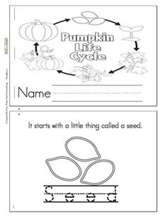 This is a cute coloring and story book about the life cycle of a pumpkin.It also has tracing skills. First Grade Science, Kindergarten Science, Kindergarten Reading, Science Classroom, Kindergarten Classroom, Teaching Science, Classroom Activities, Sequencing Activities, Fall Preschool