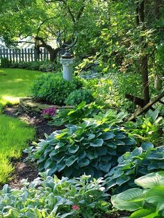 Like the rock half wall around the plants. Love the hostas with a splash of color.