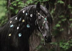 Green Warriors, Horse Braiding, Horse Jewelry, Friesian Horse, Pink Topaz, Horse Tack, Amethyst Stone, Beautiful Horses, Spirit Animal
