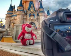 Just when you think you have the pefect shot of the Castle @lotso_at_disneyland photobombs it. It's ok always a blast to see him take over Wdw
