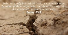 O God, thou art my God; early will I seek thee: my soul thirsteth for thee, my flesh longeth for thee in a dry and thirsty land, where no water is. God Is, Jesus Is Lord, Jesus Faith, Jesus Christ, Christian Facebook Cover, Psalm 63, Biblia Online, Bible Verses, Spirituality