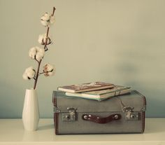 @Aysha Valkema you should do this with your vintage suitecase :)
