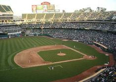 Stadium Tour, Yankee Stadium, Oakland California, California Love, Baseball Park, Baseball Field, Oakland Coliseum, Mlb Stadiums, Field Of Dreams