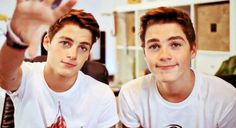 Harries twins