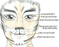 Cats makeup center - EtcyLover's and Etcetera's Jellicle Site