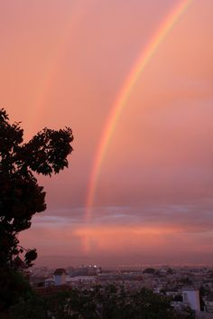 A magical San Francisco rainbow, seen from my backyard!