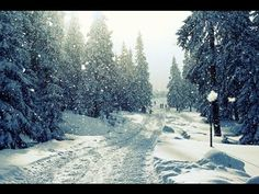 Positive Emotion Instrumental Music - Christmas Song
