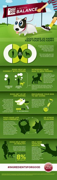 Must read for all dog owners: Tips to Bring Balance to You and Your Dog's Life | Pawsitively Pets