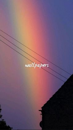 wallpapers rosa
