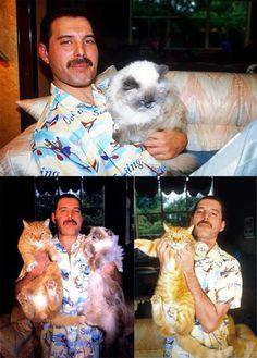 Freddie Mercury with his cats Oscar and Tiffany.