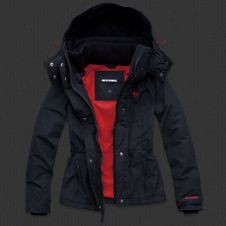 either the fleece lined Hollister All-Weather Parka or the Sherpa ...