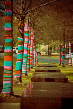 """A Knitted Wonderland"" Yarn Bombing at Blanton Museum. Austin, TX."