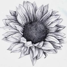 Sunflower tattoo!