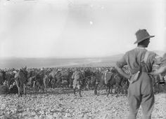 Capture of Damascus. Some of the prisoners captured in Barada Gorge by the and Australian Light Horse Brigade, September Lest We Forget, British Army, First Class, World War I, Palestine, Damascus, Wwi, Prison, Modern Art