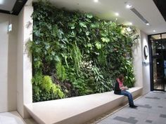壁面緑化 Vertikal Garden, Office Entrance, Green Wall Art, Green Architecture, Garden Living, Environment Design, Tropical Garden, Green Flowers, Wall Design