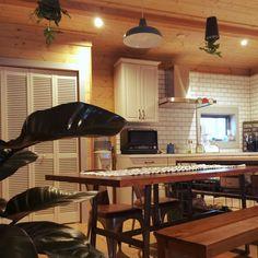 yuuさんの、観葉植物,ブラインド 木製,IDEE 照明,ブラックカージナ,IKEA,ルーバー,スカイプランター,テーブル,BESSの家,タイル,机,のお部屋写真