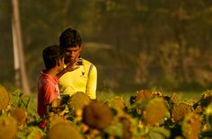 """""""Morning Conversations""""  Agriculture College, Bangalore, India  © Cinthia Gibbens-Stimson, All Rights Reserved."""
