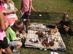 Dog adoption party using our crate to keep all the 'stuffed puppies' in! Each child drew a number and crawled into crate to get their puppy of choice!