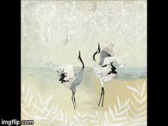 Dancing Cranes by Rachel Grant Illustration www.rachel-grant.com #JapaneseCranes #illustrationAnimated