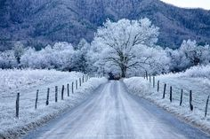 Frosty Winter morning in Cades Cove, Great Smokey Mountains, Tennessee. Photo by https://www.facebook.com/DrivebyShotz