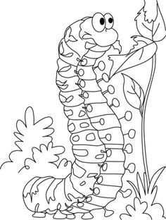 Caterpillar satisfying hunger coloring pages | Download Free Caterpillar satisfying hunger coloring pages for kids | Best Coloring Pages