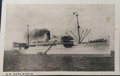 Postcard of the SS Zeelandia Sailing Ships, Ss, Boat, Painting, Painting Art, Boats, Paintings, Sailboat, Drawings