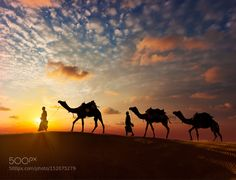 Popular on 500px : Voyage rajasthan by aryavritt