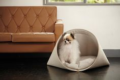Modern Dog Beds and Accessories from HOWLPOT