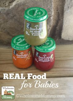 Real Food For Babies From Beech-Nut