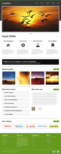 Loomo is a wonderful WordPress business theme with numberless useful functions. The entire theme is customizable.