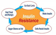 4 Steps To Lose Weight And Manage Insulin Resistance