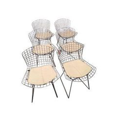 Original Bertoia Chairs - Set of 6
