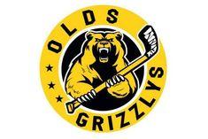 Canada Hockey, Hockey Logos, Sports, Bears, Hs Sports, Sport, Bear