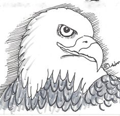How to Draw Worksheets for Young Artist: How to Draw an Eagle Face Lesson and Worksheet