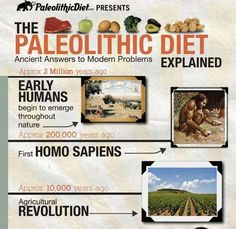 Paleolithic Diet my site only at http://www..dietplaninfo.com