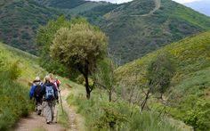 Peregrinos en el Camino de Santiago. I will walk this one day.