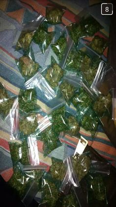 trippy drugs weed marijuana smoke ganja cannabis lsd pot 420…(424) 334-1310 EMAIL……tommykane26@gmail.comORDER TODAY