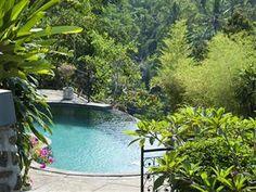 Ubud Dedari Villas Bali - Swimming pool  ini view kolamnya sih yg bikin ngiler Ubud Hotels, Resort Villa, Villas, Asia, Swimming, Outdoor Decor, World Discovery, Villa