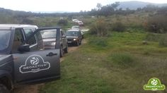 Presentación del nuevo Discovery Sport. Safari por Alqueva y Safari del Toro