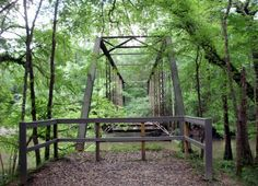 The Haunted Bellamy Bridge in Florida. It's not just the bridge that is haunted, it's the entire swamp surrounding it. This steal frame bridge was originally constructed in 1914 and is the oldest of its kind in Florida.