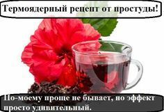 Отличное средство от простуды и просто вкусный, полезный, согревающий напиток! Я…