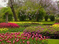 Italian Garden, Garden Park, Expo 2015, Flowers Nature, Landscape Photos, Belle Photo, Botanical Gardens, Beautiful Gardens, Golf Courses