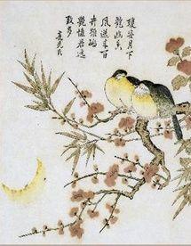 23 Avril au 31 Juillet 2010, Fleurs et oiseaux de Chine au Musée des arts asiatiques de Toulon
