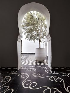 black and white tiles / courtyard