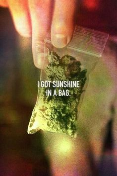 weed, sunshine, and bag kép