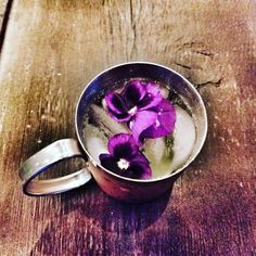 #yes it's that #time #blossomingmule @drinks #wordpress #photography – THE BIGGEST NEWS EVER