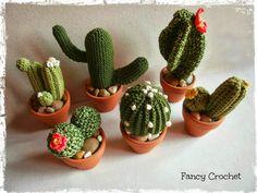 Cactus all'uncinetto - foto di gruppo!