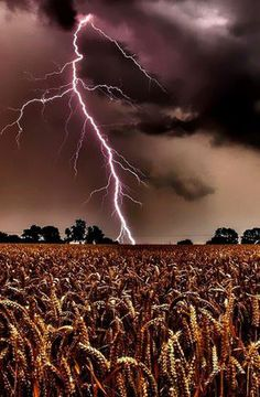 Lightning ∞∞∞∞∞∞∞∞∞∞∞∞∞∞∞∞∞∞∞∞∞∞∞∞∞∞∞∞ Weather ∞∞∞∞∞∞∞∞∞∞∞∞∞∞∞∞∞∞∞∞∞∞∞∞∞∞∞∞…