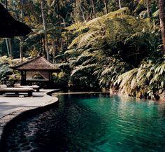 Bali interior design, bali, swimming pools, como shambhala, resort, home decorations, shambhala estat, place, dream houses